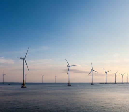 wind farm; renewable energy; wind power