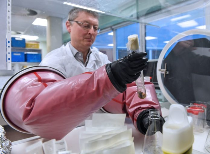Century-Old Vaccine Investigated as a Weapon Against Coronavirus