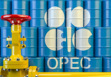 OPEC Fund develops cooperation with Western African countries