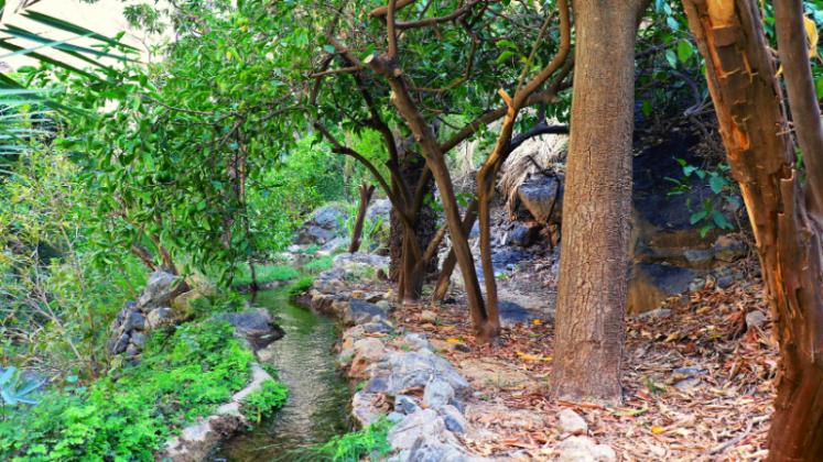 Wadi Bani Kharus: Where Nature And Civilization Meet In Harmony