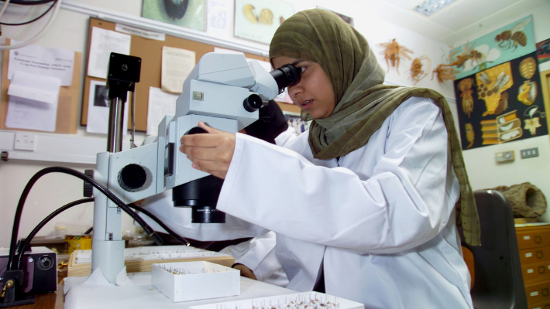 11th Omani Women's Day Special: An Overview Of Women Empowerment in The Sultanate